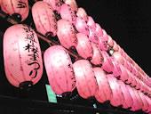 中野通り桜まつり開催中
