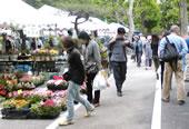 花と緑の祭典が開催