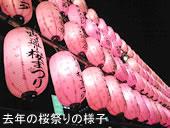 第25回中野通り桜まつり開催中止について